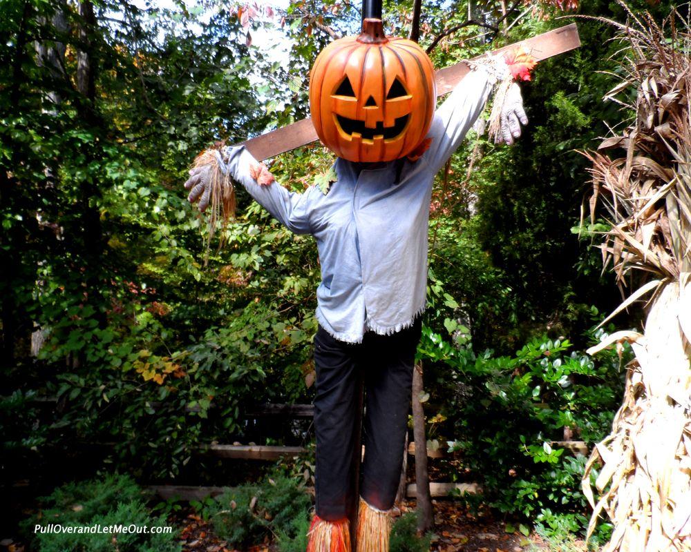 howl o scream at busch gardens williamsburg is a blast