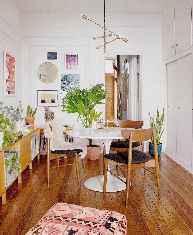 Pflanzen zimmerpflanzen wohnzimmer gr n einrichtung for Zimmerpflanzen wohnzimmer