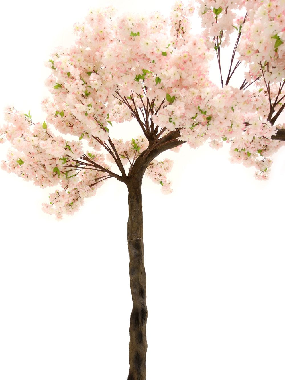 Pink Cherry Blossom Canopy Tree 3 3m Event Prop Hire Tree Canopy Event Props Flower Wall Backdrop