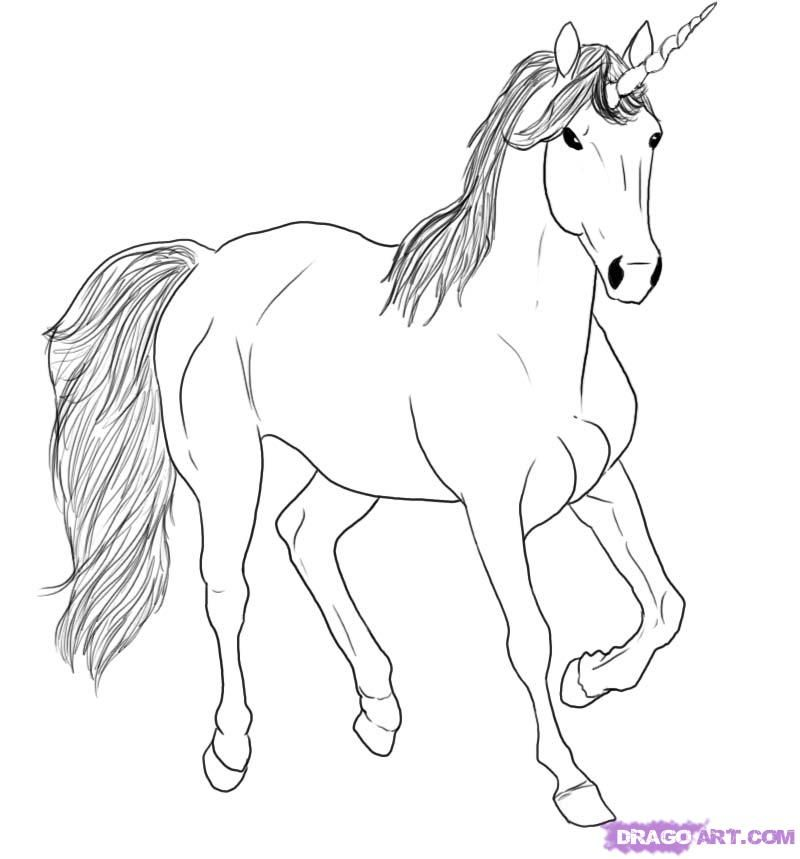 How to draw a sky unicorn step 5