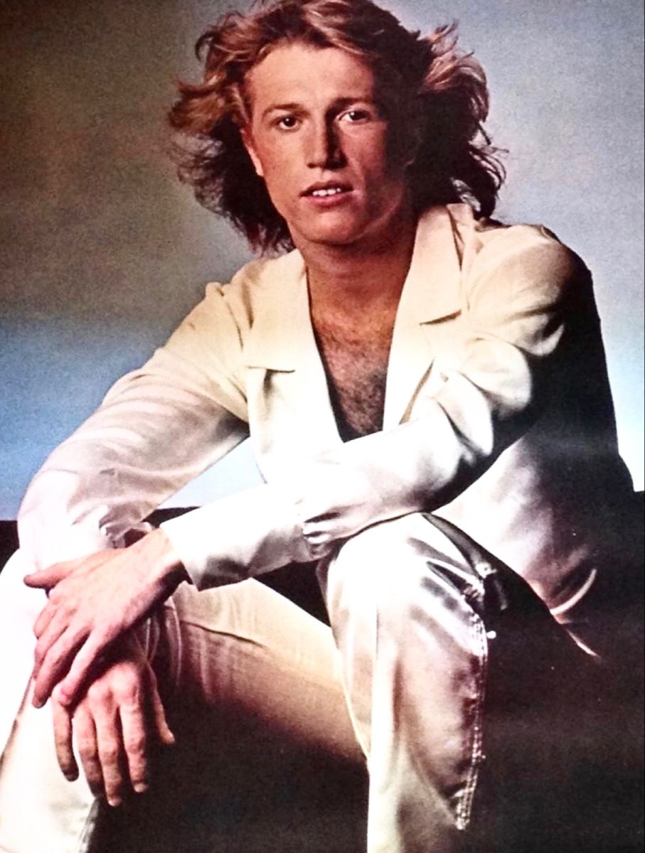 Andy Gibb In 2020 Andy Gibb