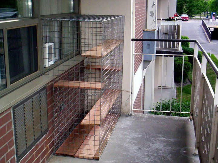 Bennett S Future Catio Will Be Similar To This Except More Square And Maybe Taller With Room For A Grass Bed