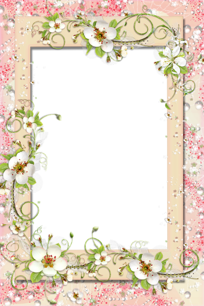 Transparent PNG Frame with Flowers | BORDERS & FRAMES | Pinterest ...