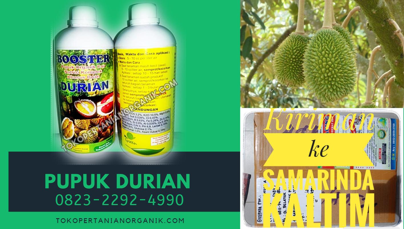 Pin Di Terbaik Hub 0823 2292 4990 Jual Poc Durian Musang King Kirim Kruni Harga Pupuk Organik Durian Kruni Agen Pupuk Organik Cair Durian Kruni