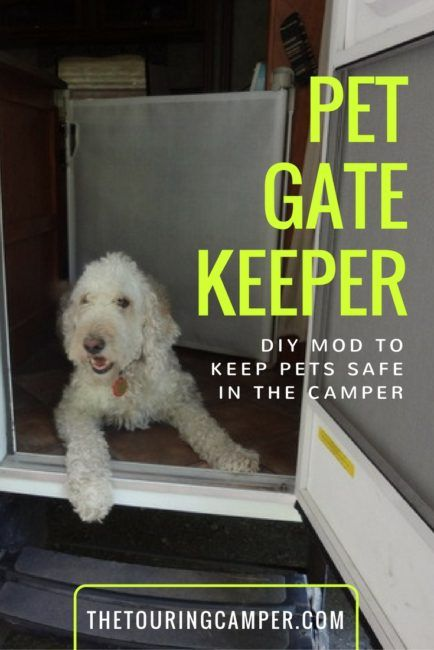 Looking for ideas to keep your pet safe and out of the way in your camper? Find out how a simple DIY mod created the perfect solution for a camper pet gate.