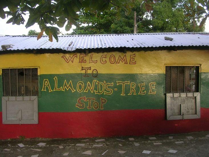 Jamaica 2011 WG
