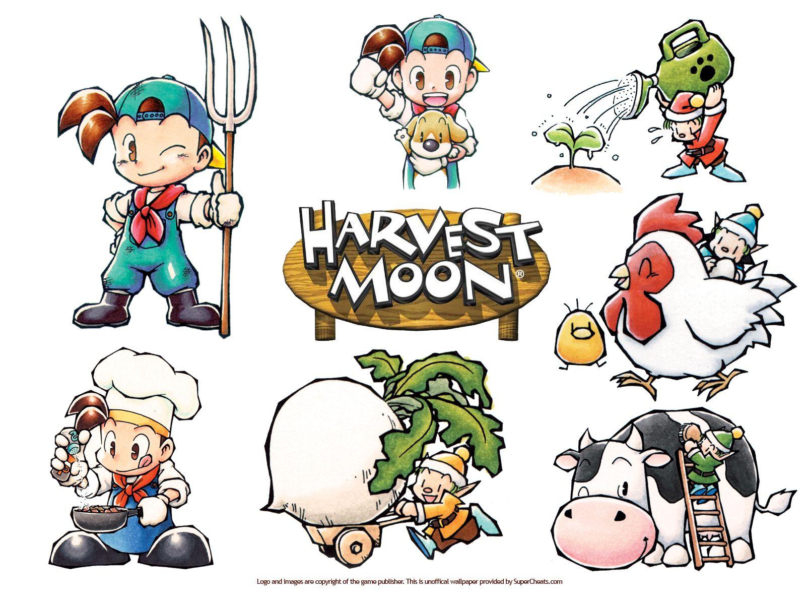 Resultado de imagem para harvest moon back to nature