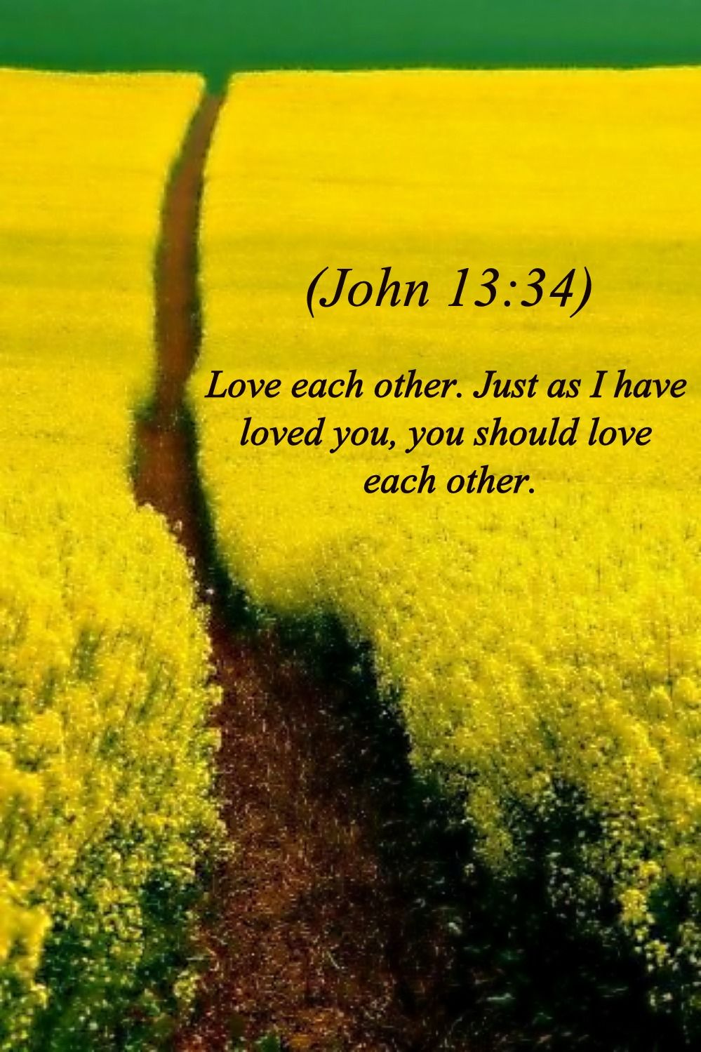 Pin on Bible Scripture Pictures