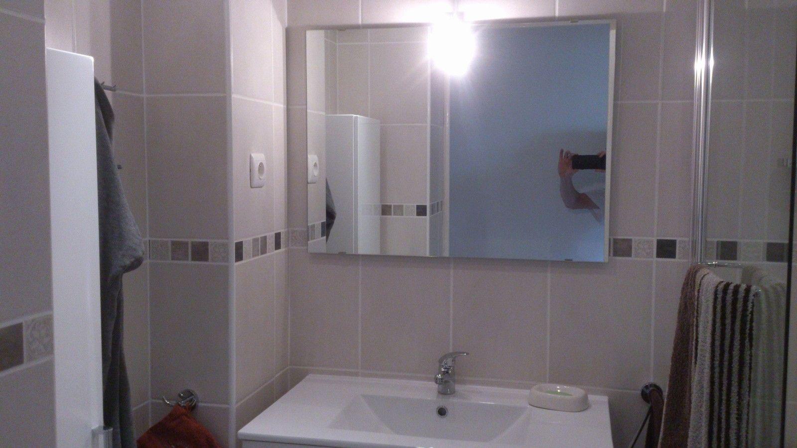 Habillage Baignoire Placo Hydrofuge Pour Maximiser Votre Disposition De Decoration Bathroom
