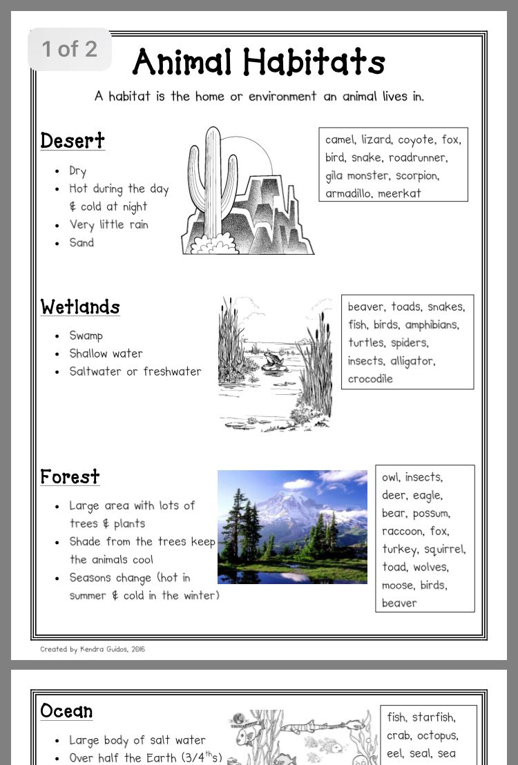 Habitat   Animal habitats kindergarten [ 1108 x 750 Pixel ]