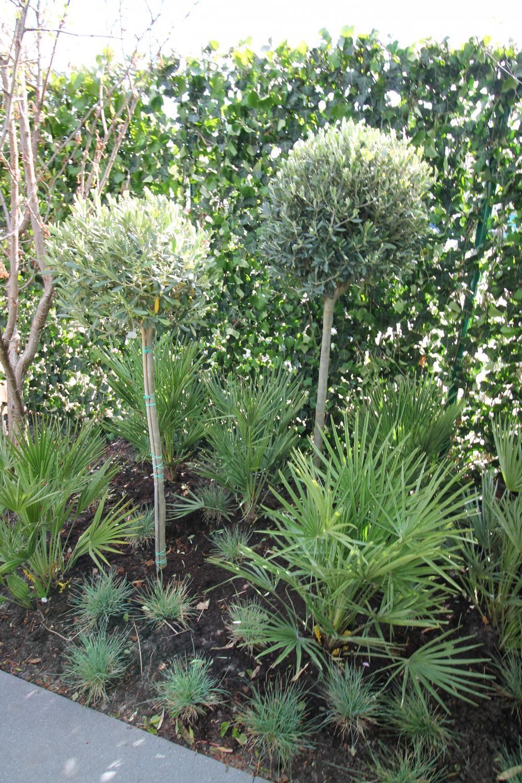 Stoere tuin (deel 2) - Eigen Huis en Tuin