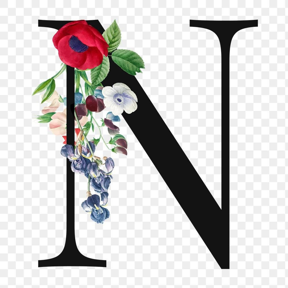 Flower Decorated Capital Letter N Typography Free Image By Rawpixel Com Sicha S Letter Images Letter N Free Illustrations