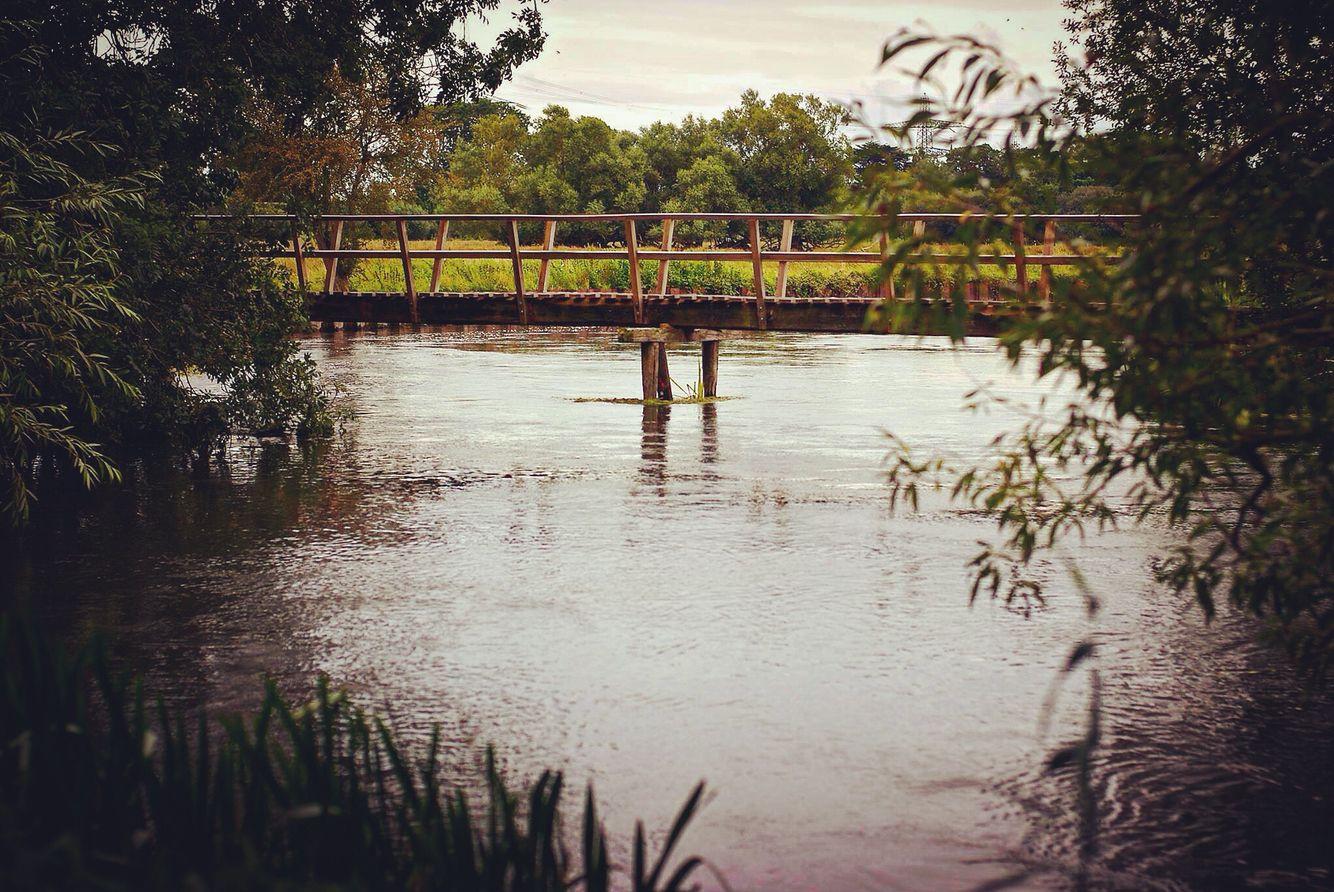 Footbridge on the River Test, Broadlands. Fly fishing.