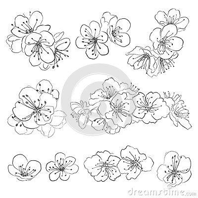 ensemble de fleurs de cerisier de dessin tatouages. Black Bedroom Furniture Sets. Home Design Ideas