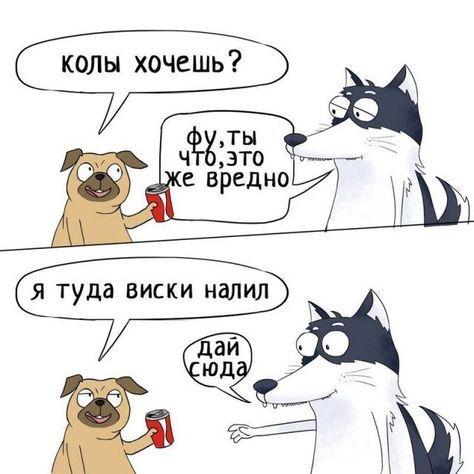 Забавные комиксы из жизни Хаски Карла (24 картинки ...