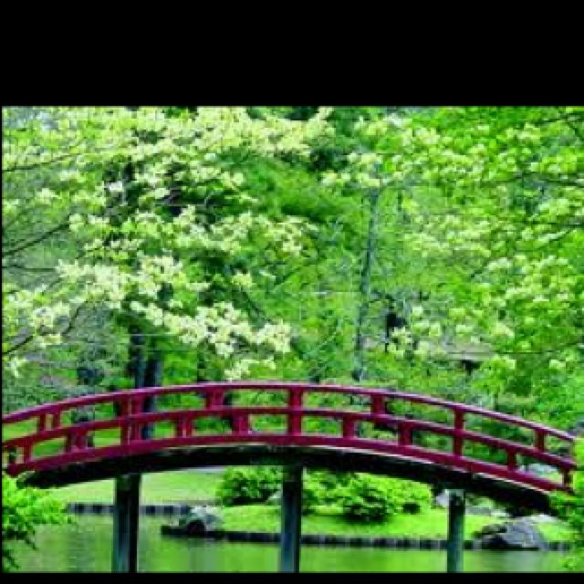 The Half Moon Bridge At The Memphis Botanical Gardens I