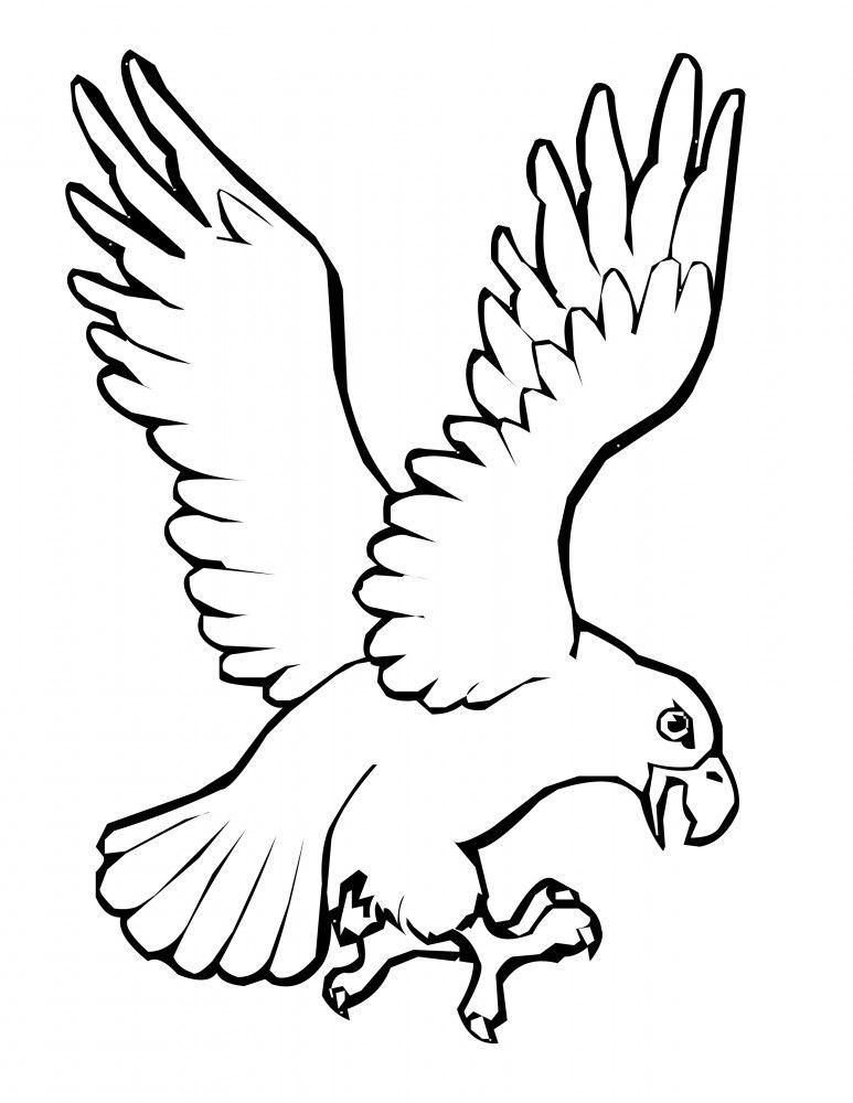 Resultado de imagen para pájaros para colorear e imprimir | crisanto ...