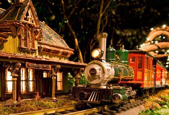 af01290c3733f48384dfc9d27bf3b58f - Holiday Train Show At Bronx Botanical Gardens