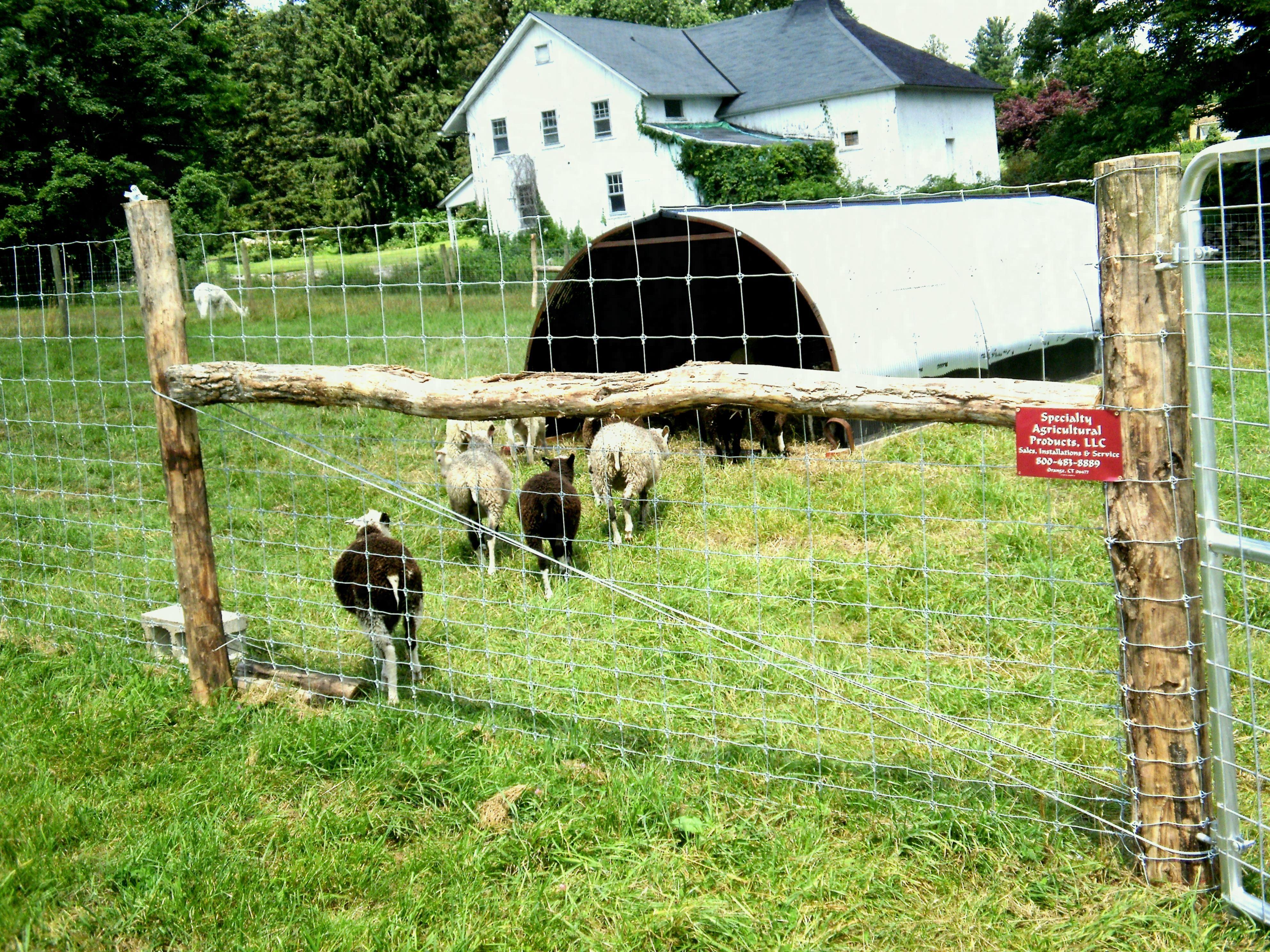 Fine Twisted Wire Fencing For Farmland ... | Fences | Pinterest ...