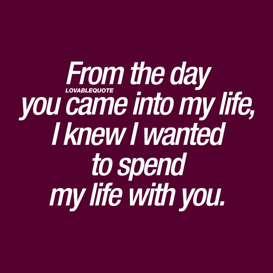 I Love My Life Quotes: From The Day You Came Into My Life, I Knew I Wanted To