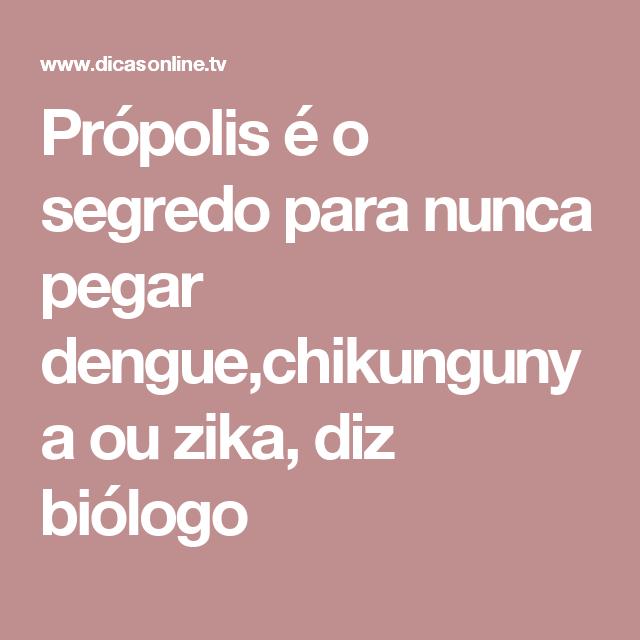 Biologo Ensina Como Nunca Pegar Dengue Chikungunya E Zika Virus