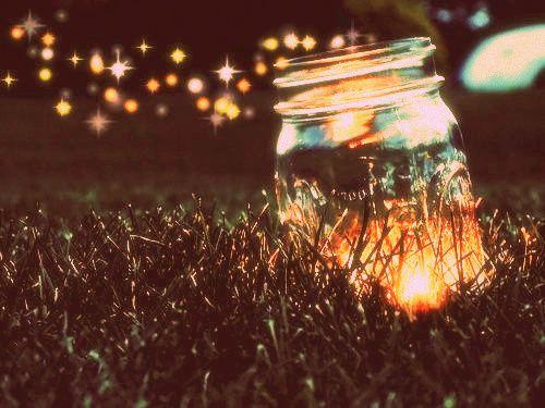Risultati immagini per catch fireflies