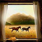 @ natalie yoder Running Free Window Landscape - Personalized Horse Gift