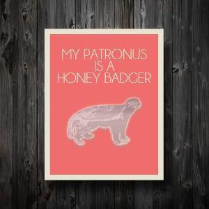 Honey Badger.... Honey Badger doesn't care...Honey Badger doesn't give a shhh. HAHAHAH!