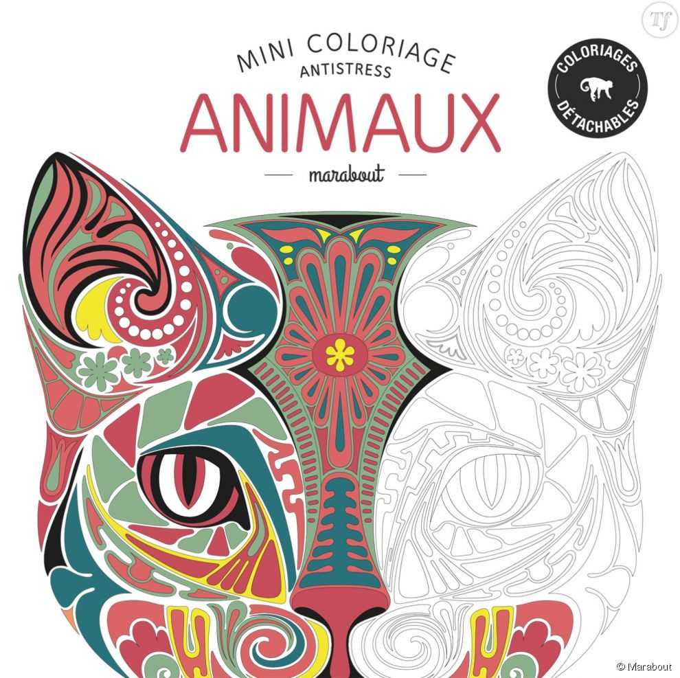 Mini coloriage antistress Animaux Marabout