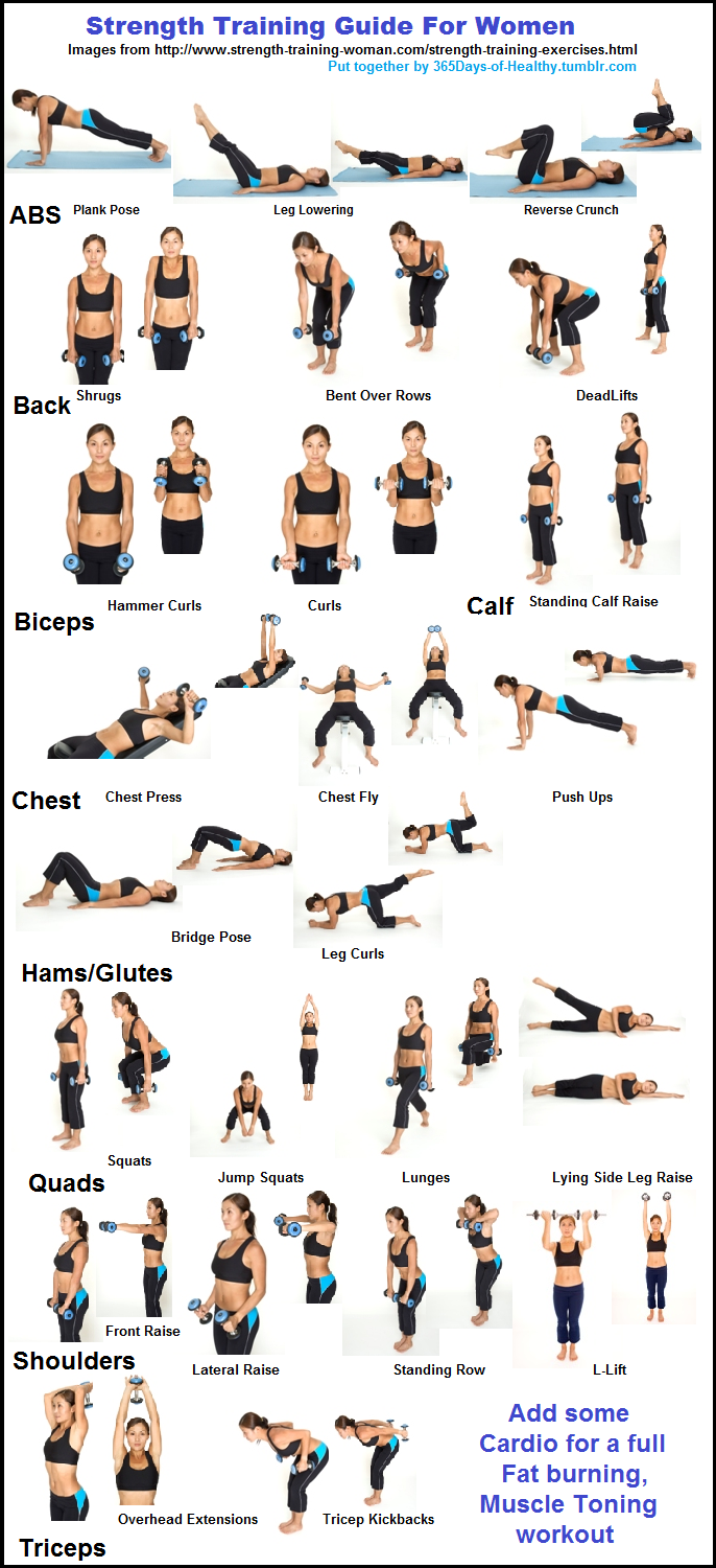hight resolution of free weights and toning exercises cristina kish check out the leg raises on this diagram this is what i was talking about