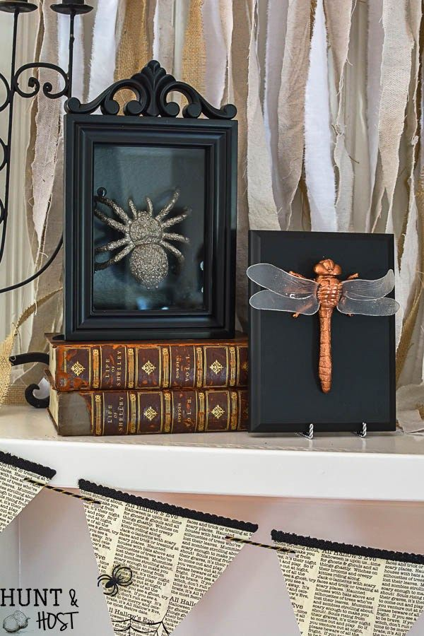 Gilded Bugs Display Case: Dollar Store Halloween Decorations ...