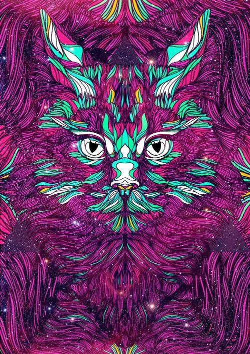 Картинка кислотный кот
