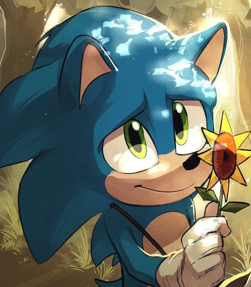 Isa이사 On In 2020 Sonic The Movie Game Sonic Sonic