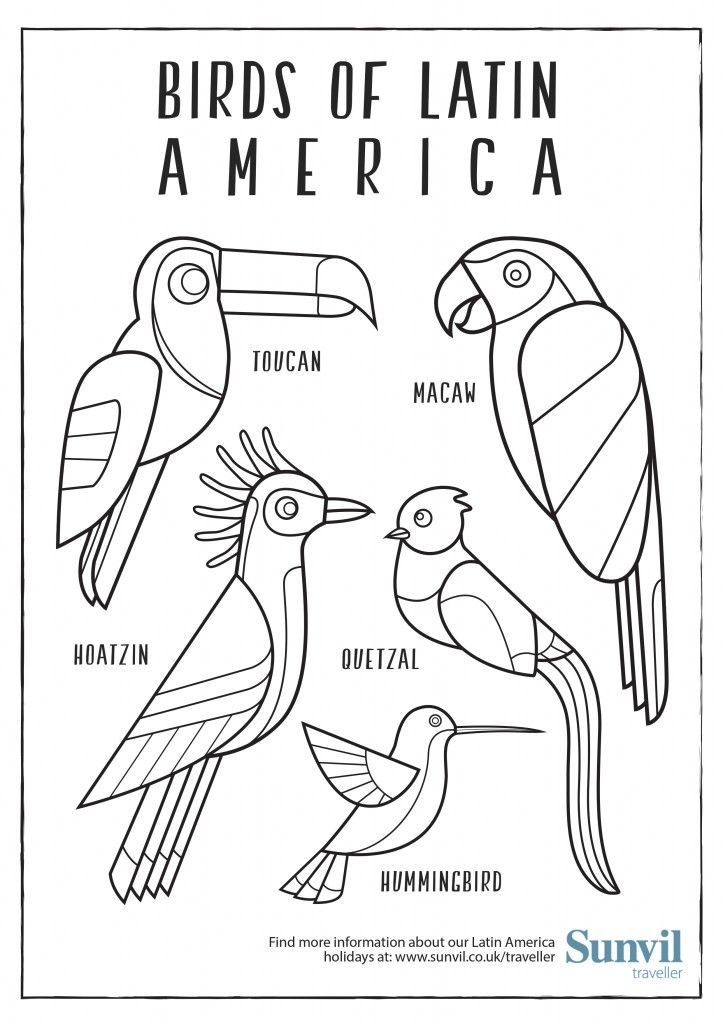 Birds Of Latin America Colouring Page Latin America Coloring