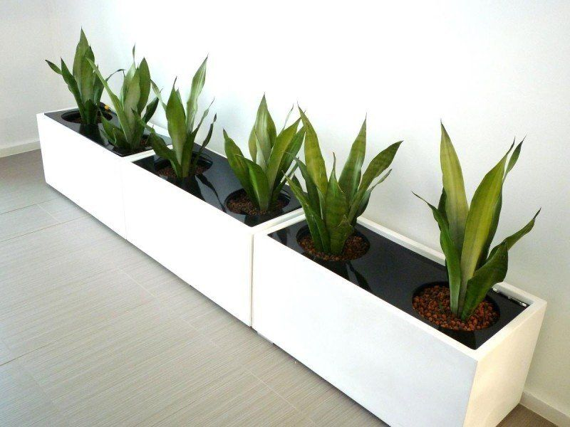 Indoor Planter Boxes For 2020 Ideas On Foter Indoor Planter Box Indoor Plant Pots Large Indoor Plants