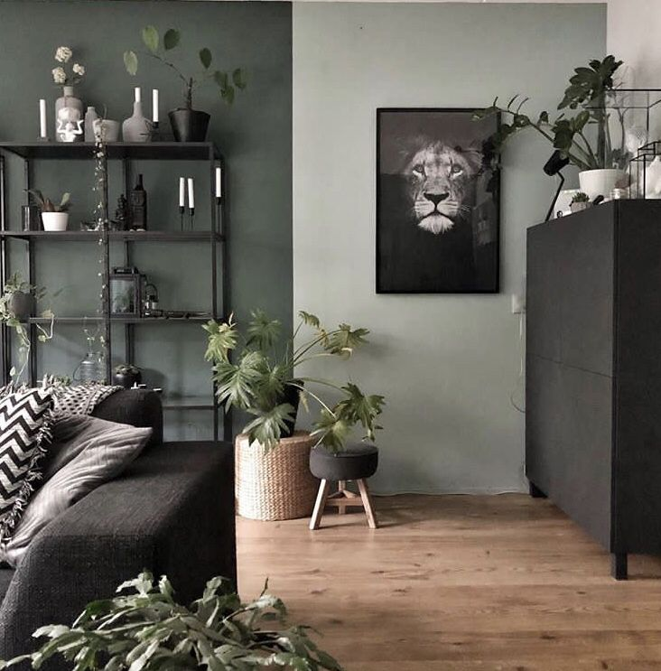 mur gris vert kaki clair salon en 2019 d coration. Black Bedroom Furniture Sets. Home Design Ideas