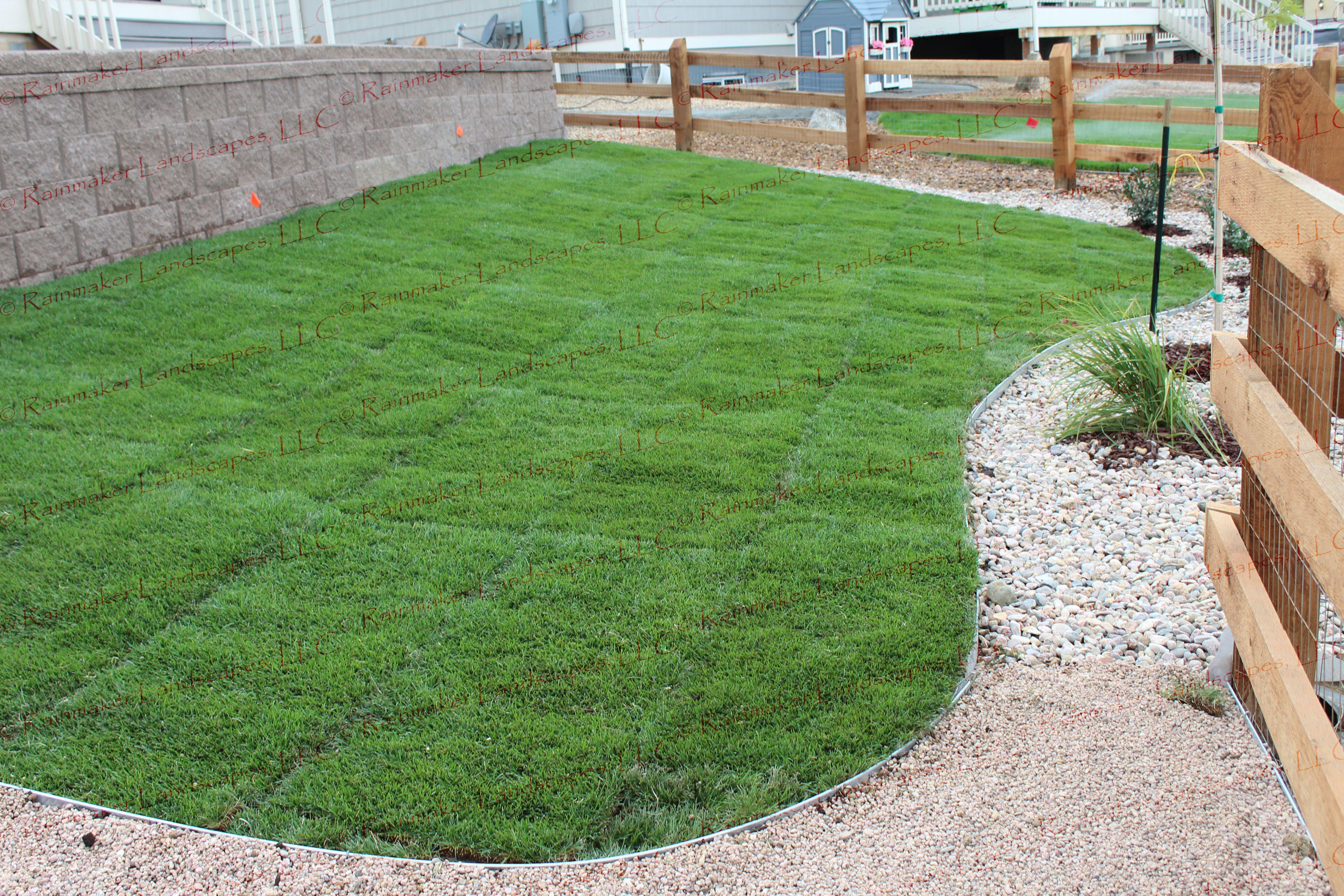 back yard landscape, retaining wall, arvada colorado landscape ...