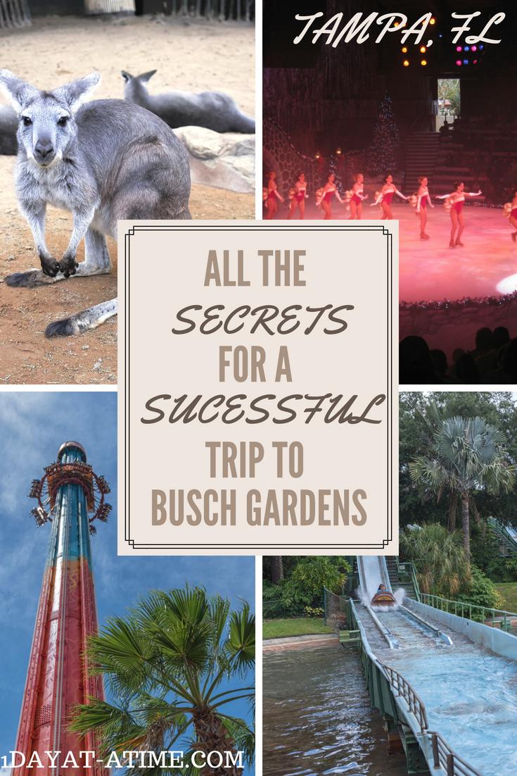 Camping Near Busch Gardens Tampa Fl