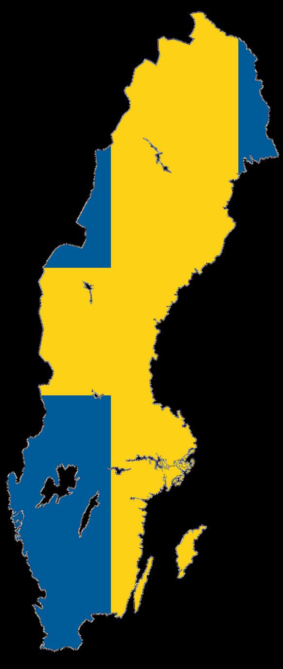 Flag Of Sweden Zazzle Com In 2020 Sweden Flag Flag Paper Texture