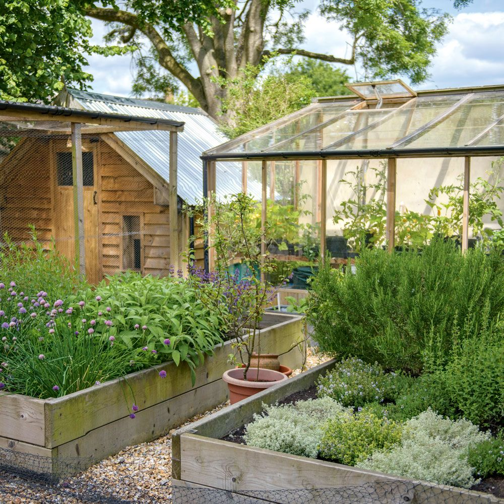 Country garden with raised herb and vegetable beds and greenhouse ...