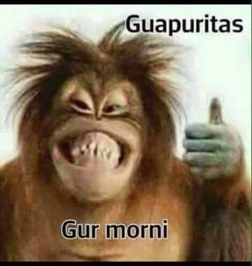 Jajajajaja Bueno Bueno Un Poco De Humor Para El
