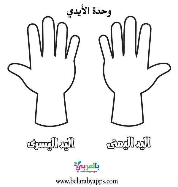 صور ورسومات تلوين وحدة الأيدي اوراق عمل وحدة الايدي للتلوين بالعربي نتعلم In 2021 Peace Gesture Okay Gesture Peace