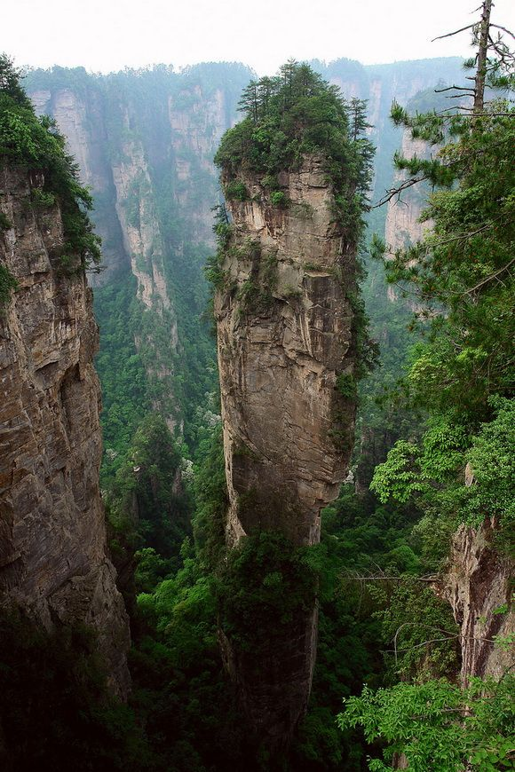 Zhangjiajie National Forest Park, China.