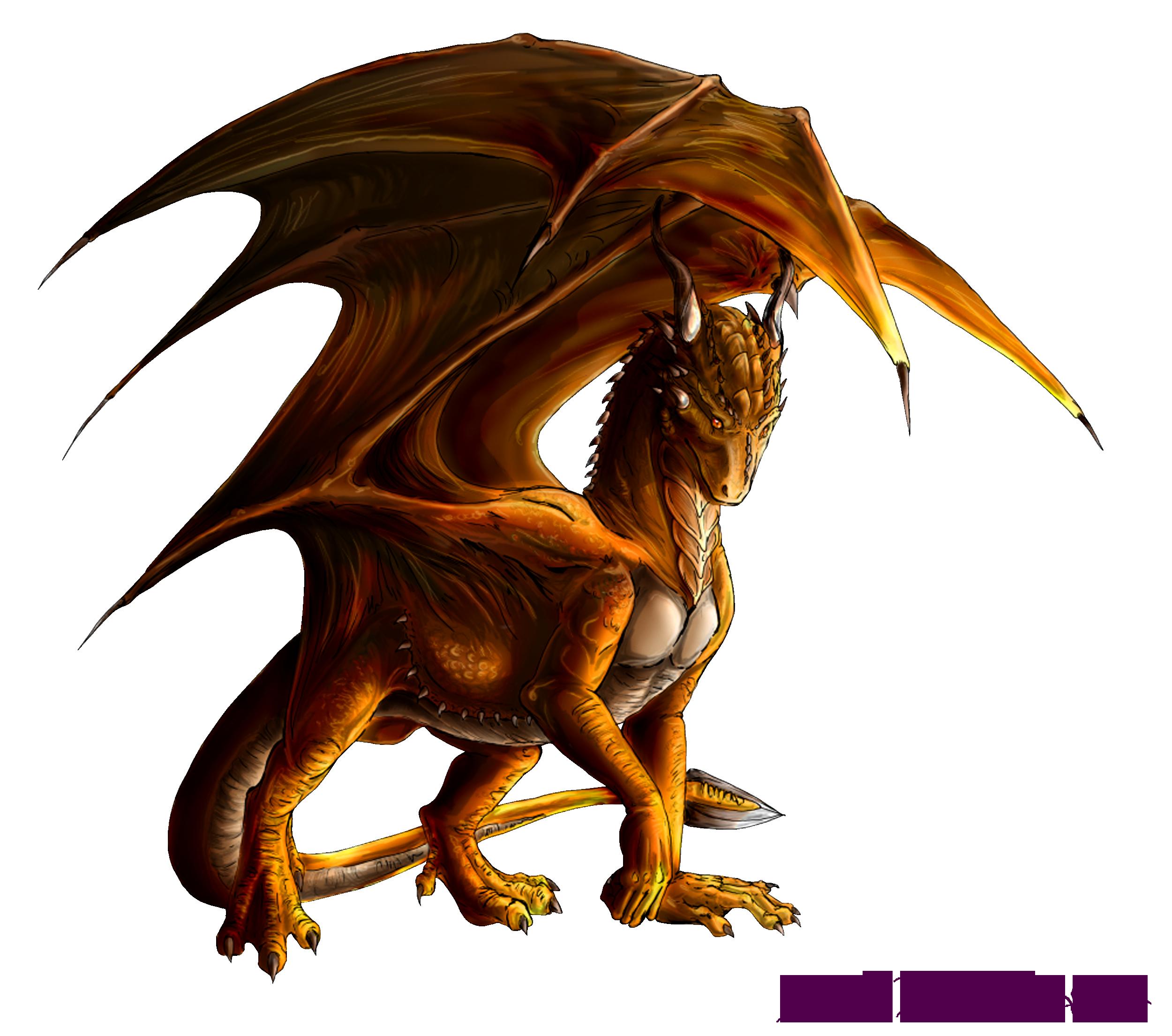 dragons Render Dragons Renders
