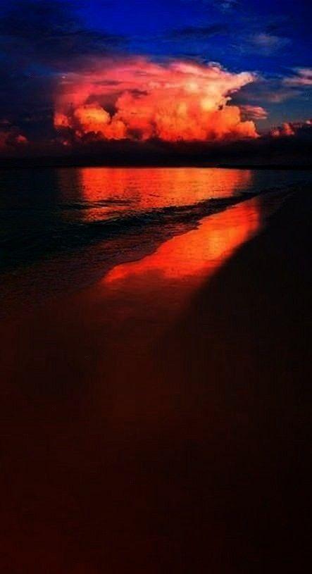 Best Photography Nature  Season Backdrops Summer Backdrops Beach Background Sunset X39-E  I lo