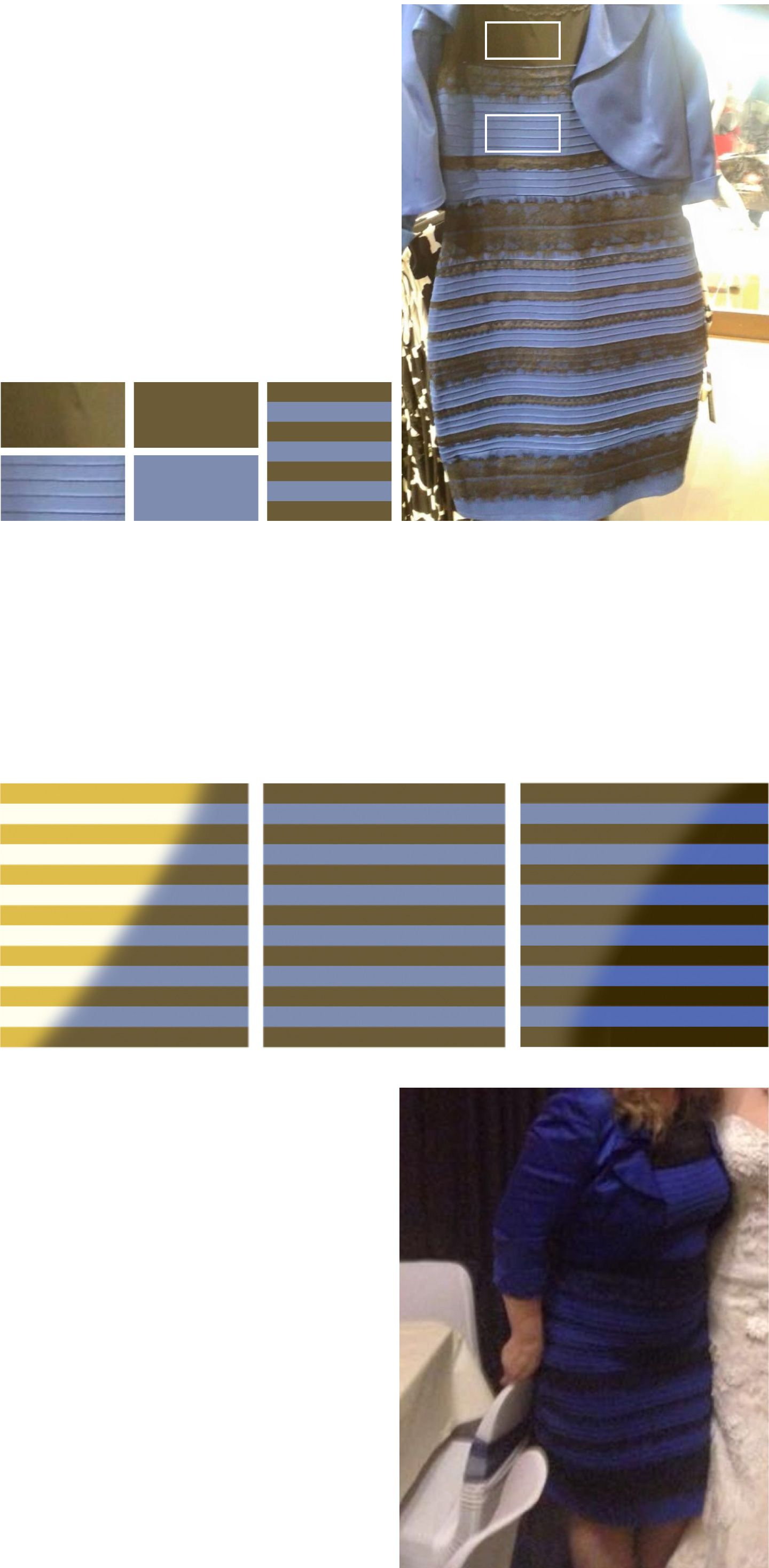 Is That Dress White And Gold Or Blue And Black Blue Black White Gold White Gold Dress Blue And Gold Dress