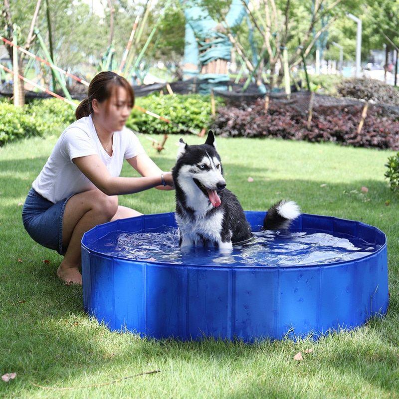 Chillpaw Foldable Dog Pool Pet Bath Swimming Tub In 2020 Dog Pool Swimming Tub Dog Swimming
