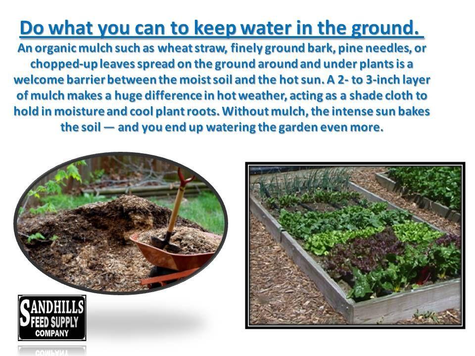 Compost Turns In To Garden Gold Organic Mulch Garden Gold Compost