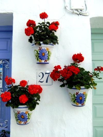 白い壁を飾る赤いゼラニウム / white wall and red geranium **from Valencia, Spain**
