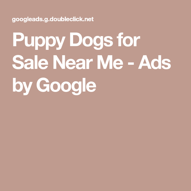 Puppy Dogs for Sale Near Me Ads by Google Dogs for